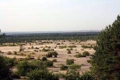 Έρημος Bledowska (Πολωνία) Στοκ φωτογραφία με δικαίωμα ελεύθερης χρήσης