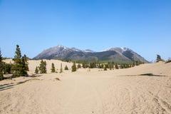 Έρημος Carcross στοκ φωτογραφία με δικαίωμα ελεύθερης χρήσης