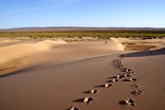 έρημος gobi Στοκ φωτογραφία με δικαίωμα ελεύθερης χρήσης