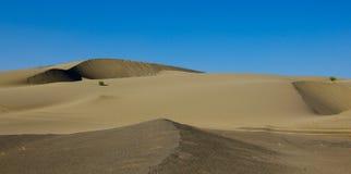 έρημος gobi Στοκ Φωτογραφίες