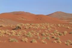 Έρημος Namib με το Deadvlei και το Sossusvlei στη Ναμίμπια Στοκ Φωτογραφία