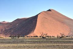 Έρημος Namib, Ναμίμπια Στοκ φωτογραφίες με δικαίωμα ελεύθερης χρήσης