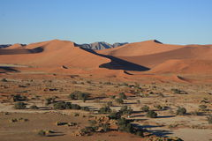 Έρημος Namib στη Ναμίμπια Στοκ φωτογραφία με δικαίωμα ελεύθερης χρήσης