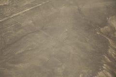 Έρημος Nazca, Περού, hieroglyph κολίβριο στοκ φωτογραφία με δικαίωμα ελεύθερης χρήσης
