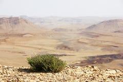 Έρημος Negev και κρατήρας του Ramon Στοκ φωτογραφίες με δικαίωμα ελεύθερης χρήσης
