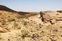 Έρημος Negev και κρατήρας του Ramon Στοκ Φωτογραφίες