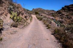 Έρημος Road Στοκ εικόνες με δικαίωμα ελεύθερης χρήσης