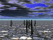 έρημο έδαφος Στοκ Φωτογραφίες