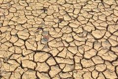 Έρημο έδαφος ή ξηρά περιοχή, καμία ελπίδα και απελπισία στοκ φωτογραφίες με δικαίωμα ελεύθερης χρήσης