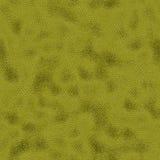 Δέρμα φιδιών Στοκ Φωτογραφία