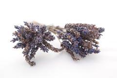 Δύο δέσμες ξηρό lavender σε μια άσπρη ανασκόπηση Στοκ φωτογραφία με δικαίωμα ελεύθερης χρήσης