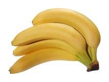 δέσμη μπανανών που απομονώνεται Στοκ Φωτογραφία