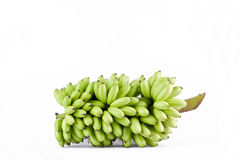 δέσμη των ακατέργαστων μπανανών αυγών στα άσπρα τρόφιμα φρούτων μπανανών MAS Pisang υποβάθρου υγιή που απομονώνονται Στοκ εικόνες με δικαίωμα ελεύθερης χρήσης