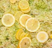Έτοιμα συστατικά για την κατασκευή του σπιτικού σιροπιού Elderflower Στοκ φωτογραφία με δικαίωμα ελεύθερης χρήσης