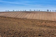 Έτοιμη καλλιεργήσιμη αγροτική γη, τοπίο με το μπλε ουρανό Στοκ φωτογραφία με δικαίωμα ελεύθερης χρήσης