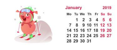 Έτος συμβόλων 2019 σκι χοίρων Ημερολογιακό πλέγμα Ιανουάριος απεικόνιση αποθεμάτων