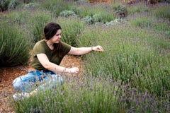 Έφηβη που κάθεται και που απολαμβάνει όμορφο φρέσκο lavender χ Στοκ εικόνα με δικαίωμα ελεύθερης χρήσης