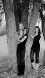 έφηβοι Στοκ εικόνα με δικαίωμα ελεύθερης χρήσης