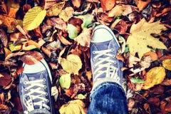 Έφηβος στο πάρκο φθινοπώρου στοκ φωτογραφίες
