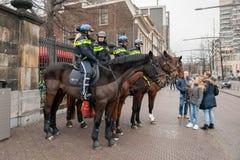 Έφιππη αστυνομία στην Ολλανδία Στοκ εικόνα με δικαίωμα ελεύθερης χρήσης