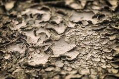 Έδαφος στην ξηρασία στοκ φωτογραφία με δικαίωμα ελεύθερης χρήσης