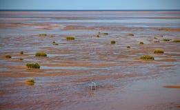 Έδρα στην παραλία σε Southport Στοκ Φωτογραφίες