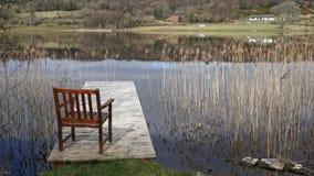 Έδρα στη λίμνη, Ιρλανδία Στοκ Εικόνες