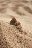 ήλιος άμμου ποδιών κάτω Στοκ φωτογραφία με δικαίωμα ελεύθερης χρήσης