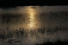 ήλιος ανόδου Στοκ Φωτογραφίες