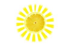 ήλιος εσπεριδοειδών Στοκ Εικόνες