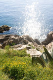ήλιος θάλασσας αντανάκλασης Στοκ Εικόνες