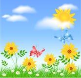 ήλιος λιβαδιών λουλουδιών Στοκ φωτογραφίες με δικαίωμα ελεύθερης χρήσης