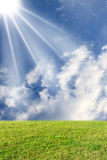 ήλιος λιβαδιών Στοκ Εικόνες