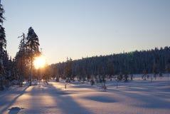 Ήλιος που αυξάνεται πέρα από το χιονώδες Lapland πιό forrest, Φινλανδία στοκ φωτογραφία