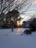 Ήλιος πρωινού στο νέο χιόνι Στοκ Εικόνα