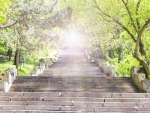 ήλιος στον τρόπο Στοκ εικόνες με δικαίωμα ελεύθερης χρήσης