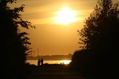 ήλιος τιμής τών παραμέτρων ζ&epsi Στοκ Φωτογραφίες