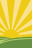 ήλιος χλόης Ελεύθερη απεικόνιση δικαιώματος