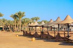 Ήλιος Parasols στην παραλία στοκ εικόνες με δικαίωμα ελεύθερης χρήσης