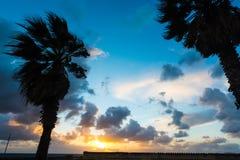 ήρεμα δέντρα ηλιοβασιλέματος σκιαγραφιών βραδιού ήρεμα Στοκ φωτογραφία με δικαίωμα ελεύθερης χρήσης