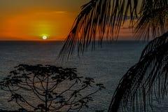 ήρεμα δέντρα ηλιοβασιλέματος σκιαγραφιών βραδιού ήρεμα Στοκ εικόνες με δικαίωμα ελεύθερης χρήσης