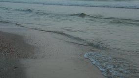 Ήρεμα κύματα στην παραλία, πρωί εν πλω, ανατολή, περιτύλιξη απόθεμα βίντεο