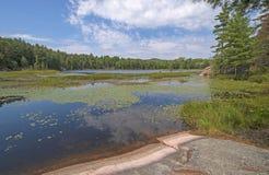 Ήρεμα νερά σε μια λίμνη αγριοτήτων στοκ εικόνες με δικαίωμα ελεύθερης χρήσης