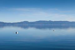 ήρεμα ύδατα λιμνών tahoe Στοκ Φωτογραφία