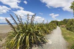 Ήρεμες θάλασσες του εθνικού πάρκου του Abel Tasman, νότιο νησί, νέο Ze Στοκ Εικόνες