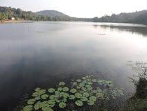 Ήρεμη λίμνη Στοκ Εικόνα