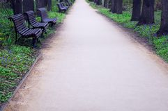 Ήρεμη αλέα πάρκων με τους ξύλινους πάγκους Στοκ φωτογραφία με δικαίωμα ελεύθερης χρήσης