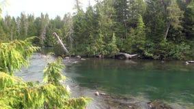 Ήρεμη ηρεμία ποταμών βουνών στα καταπληκτικά τοπία Αλάσκα υποβάθρου απόθεμα βίντεο