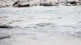 Ήρεμη και αργή ροή του ιερού ποταμού Γάγκης στην ιερή πόλη Rishikesh στη βόρεια Ινδία
