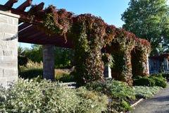 Ήρεμη περιοχή πάρκων Στοκ φωτογραφία με δικαίωμα ελεύθερης χρήσης